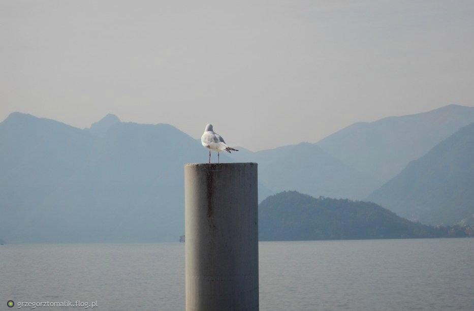 Jesienne popołudnie nad jeziorem Como...