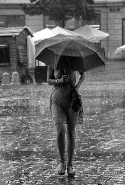 http://s11.flog.pl/media/foto_middle/9228735_krakow-street-photokrakowski-rynek-w-deszczu.jpg