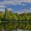 Kwiecień nad rzeką Oławą ::