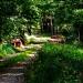 zapraszam na leśny spacer ,Brygidko :))